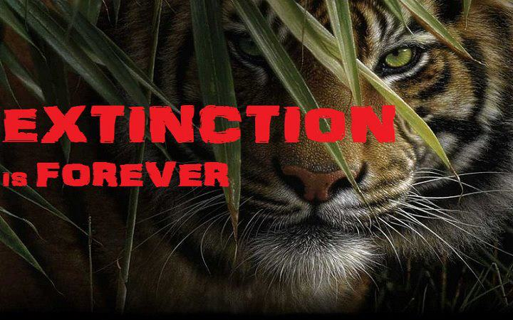 the major causes of animal extinction in our planet About the sixth mass extinction of species on the planet the major causes of biodiversity loss: animal planet believes that our global food.