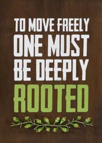 Roots Quotes Extraordinary Quotes About Roots 48 Quotes