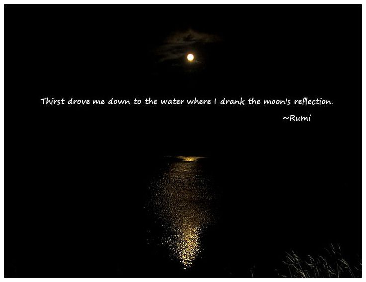 Quotes About Reflection In Water (38 Quotes