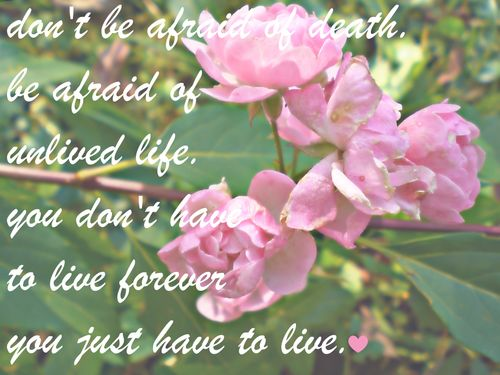 Quotes About Dead Flowers 75 Quotes