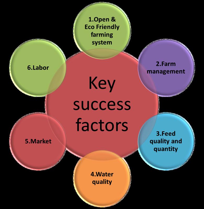 quotes about critical success factors 21 quotes