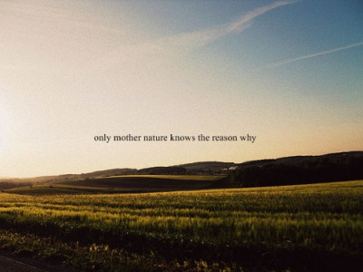 Quotes About Nature Knows Best 22 Quotes