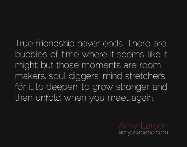 Quotes About Friendship Never End (29 Quotes