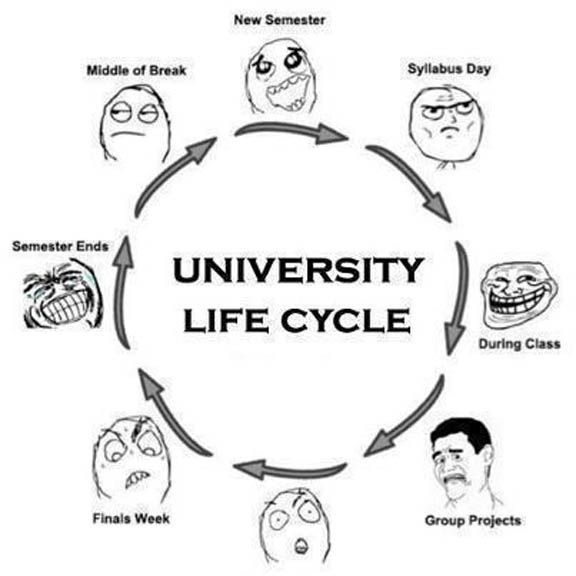 Quotes About University Life Funny