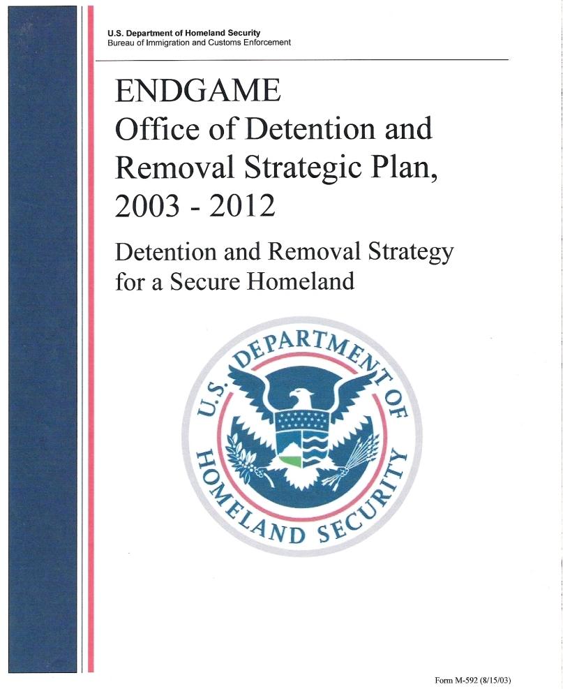 essays homeland security