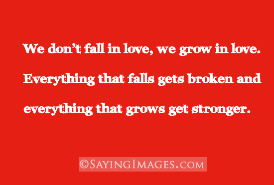 i want to fall in love with you quotes