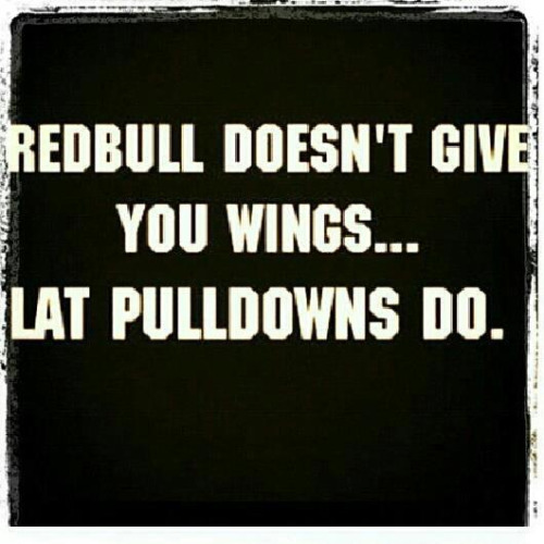 Quotes About Weight Lifting 60 Quotes Inspiration Lifting Quotes