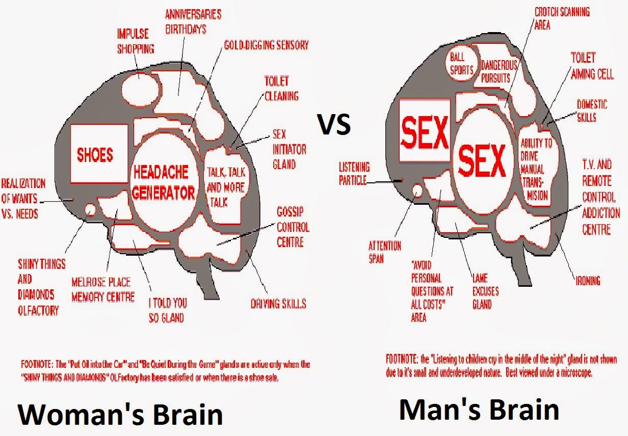comparison essay of men and women