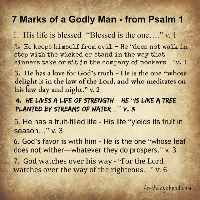 Quotes about Godly man (39 quotes)