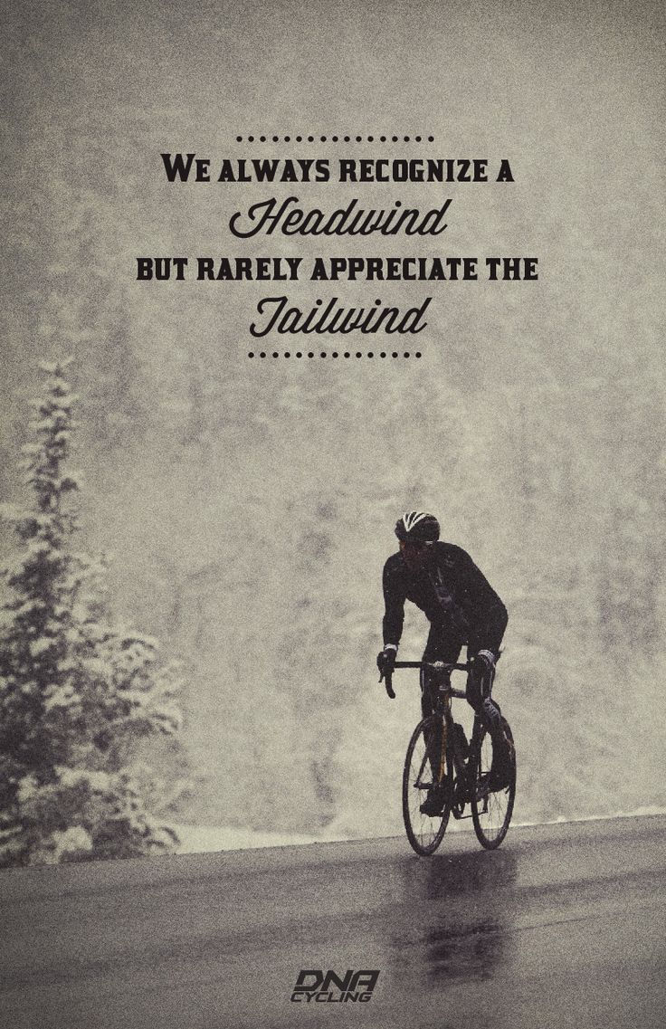 Quotes About Cycling 178 Quotes