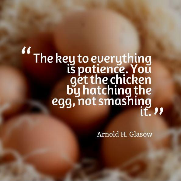 Quotes About Chicken And Eggs 53 Quotes