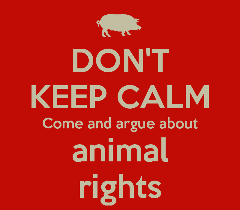 what rights do animals have? essay Animal rights as noted by buzzle (2012) are also called animal liberation it is a concept to ensure that animal rights are protected as equally as those of.