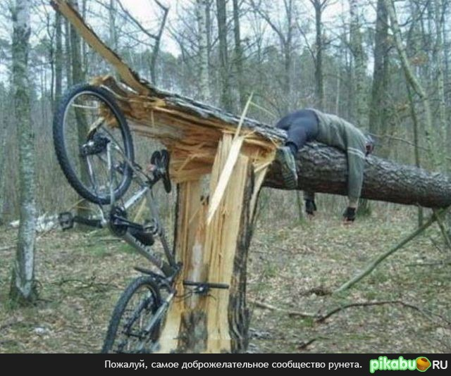 Quotes about Bike accident (25 quotes)