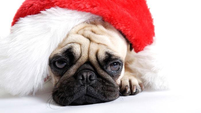 pacedmcom helpful non helpful christmas makes everything twice as sad - Saddest Christmas Songs