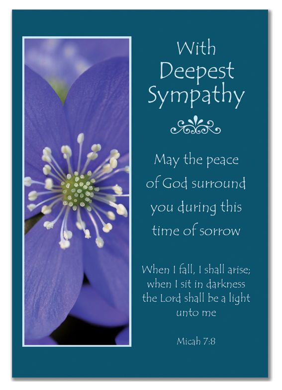 Quotes About Deepest Sympathy 60 Quotes Gorgeous Quotes About Sympathy