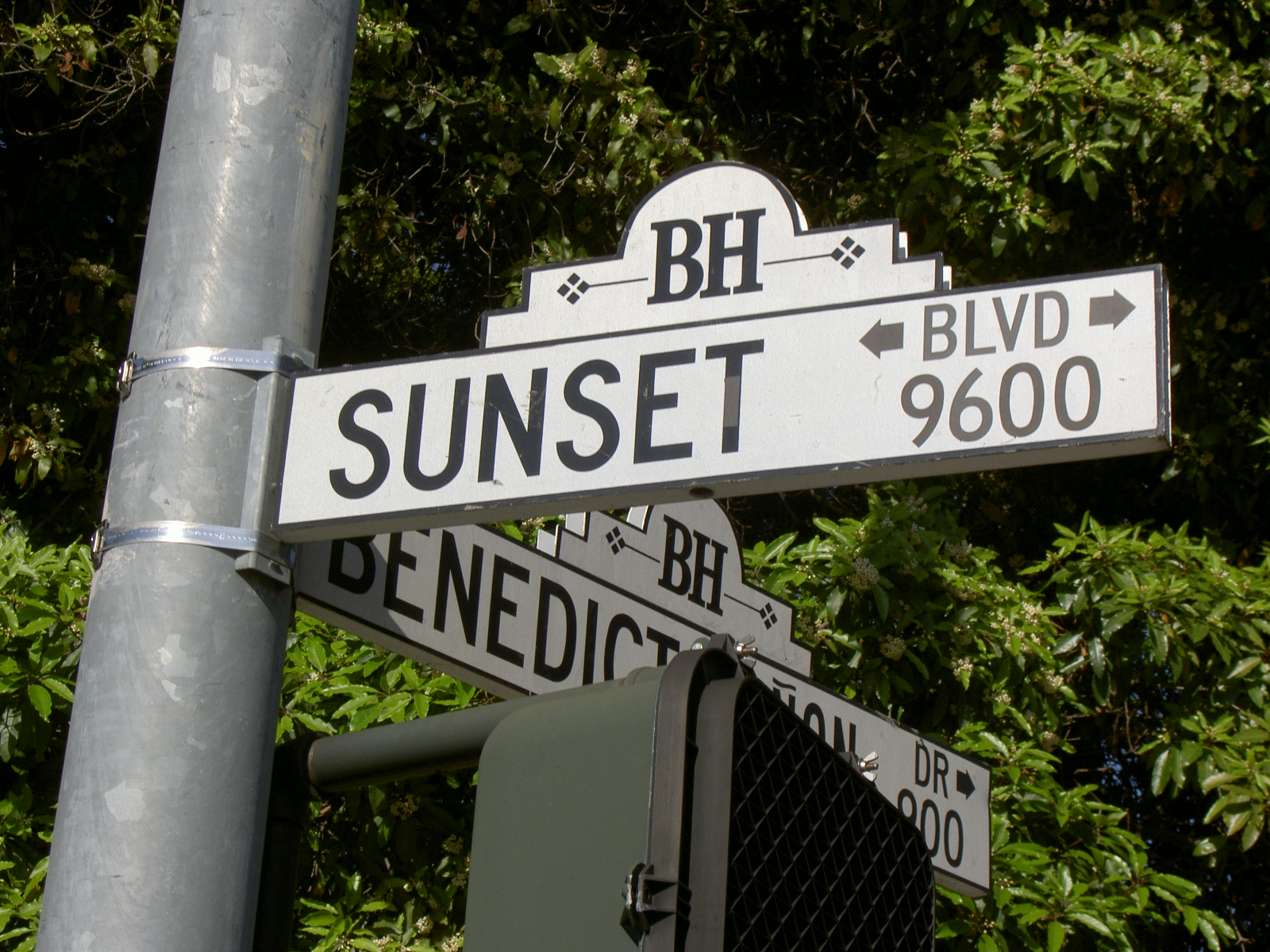 Quotes About Sunset Boulevard 52 Quotes