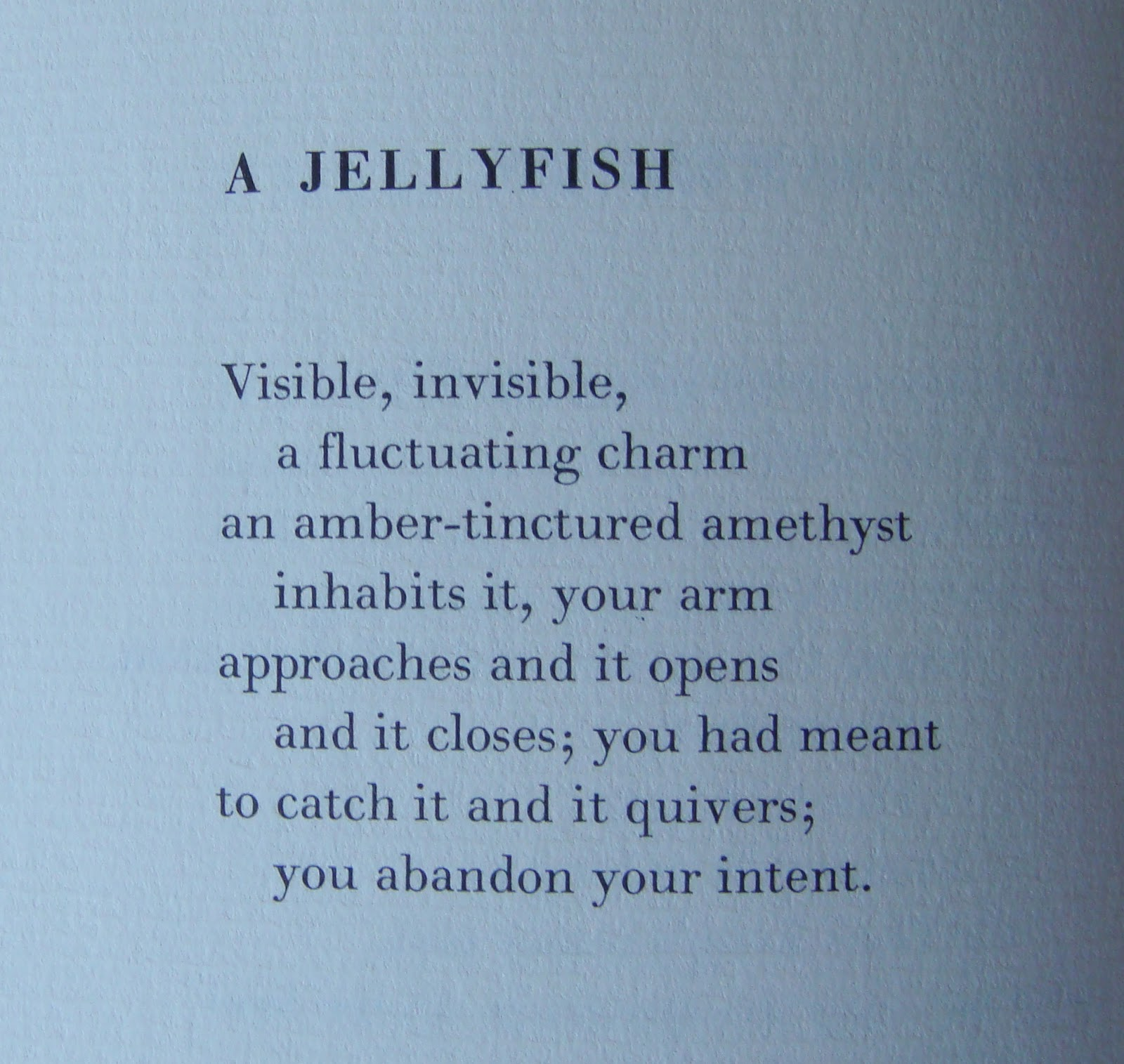 a jellyfish marianne moore