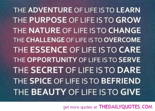 Quotes About Life Purpose 60 Quotes Gorgeous Life Purpose Quotes