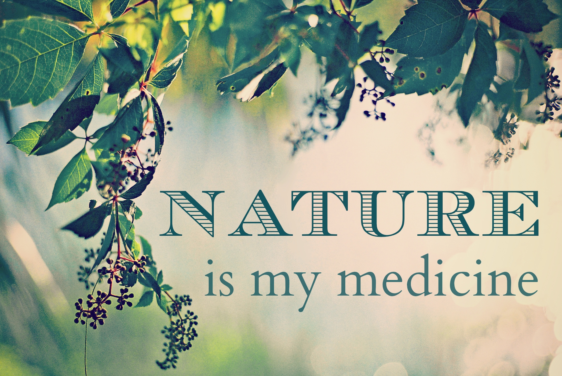 nature is at the heart of