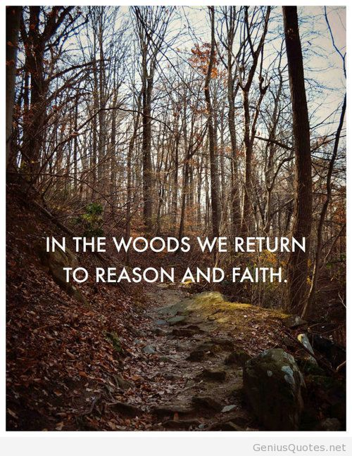 Woods Quote Collections | QuotesCop.com