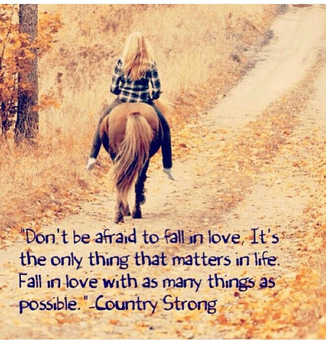 Quotes about Country strong (91 quotes)