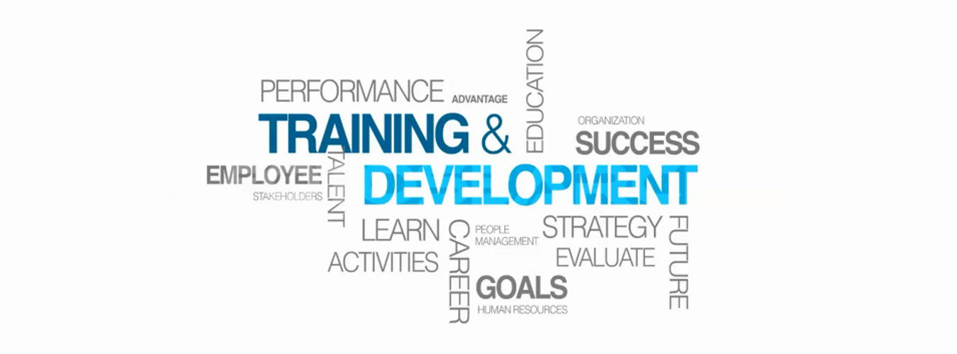 strategic employee training and development in Strategic employee development gives an employer the chance to mold staff to suit the company, avoiding what might otherwise be a difficult headhunting task in sourcing specialized.