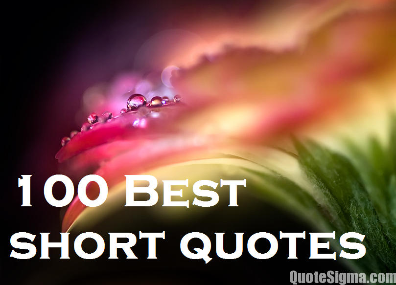 Quotes About Best Short 93 Quotes