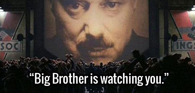 big brother isnt watching you Watch big brother online: watch full length episodes, video clips, highlights and more.