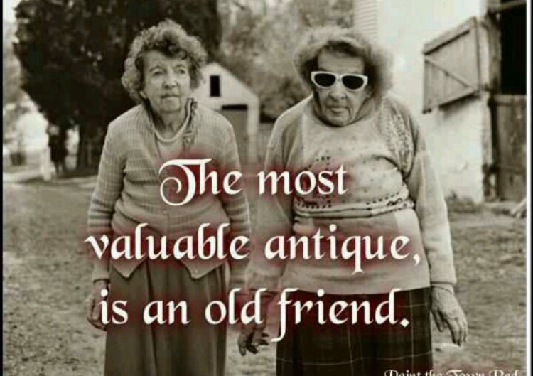 Funny old lady best friend pictures