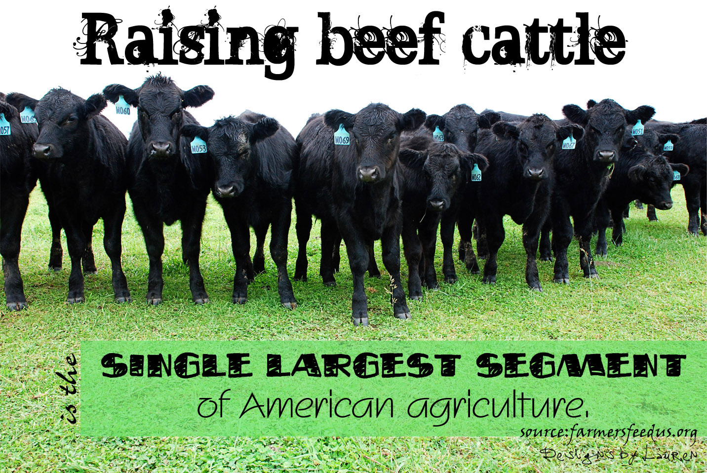 Farming Quotes 202 Cattle Quotesquotesurf