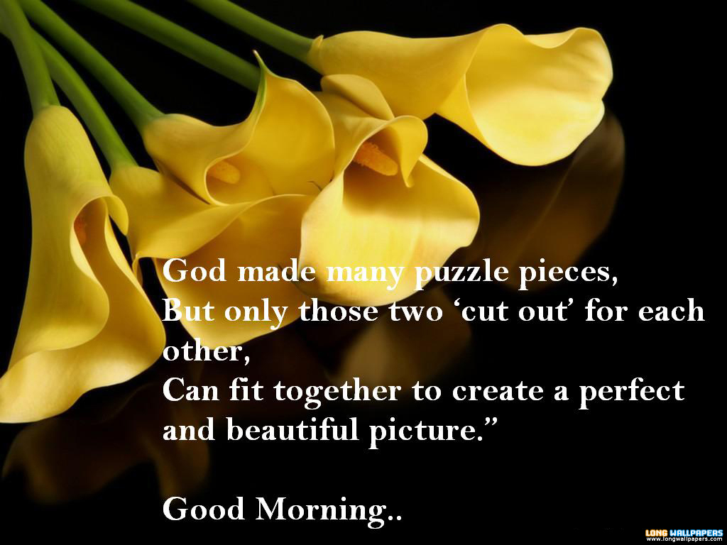 Quotes About Morning And Evening 95 Quotes