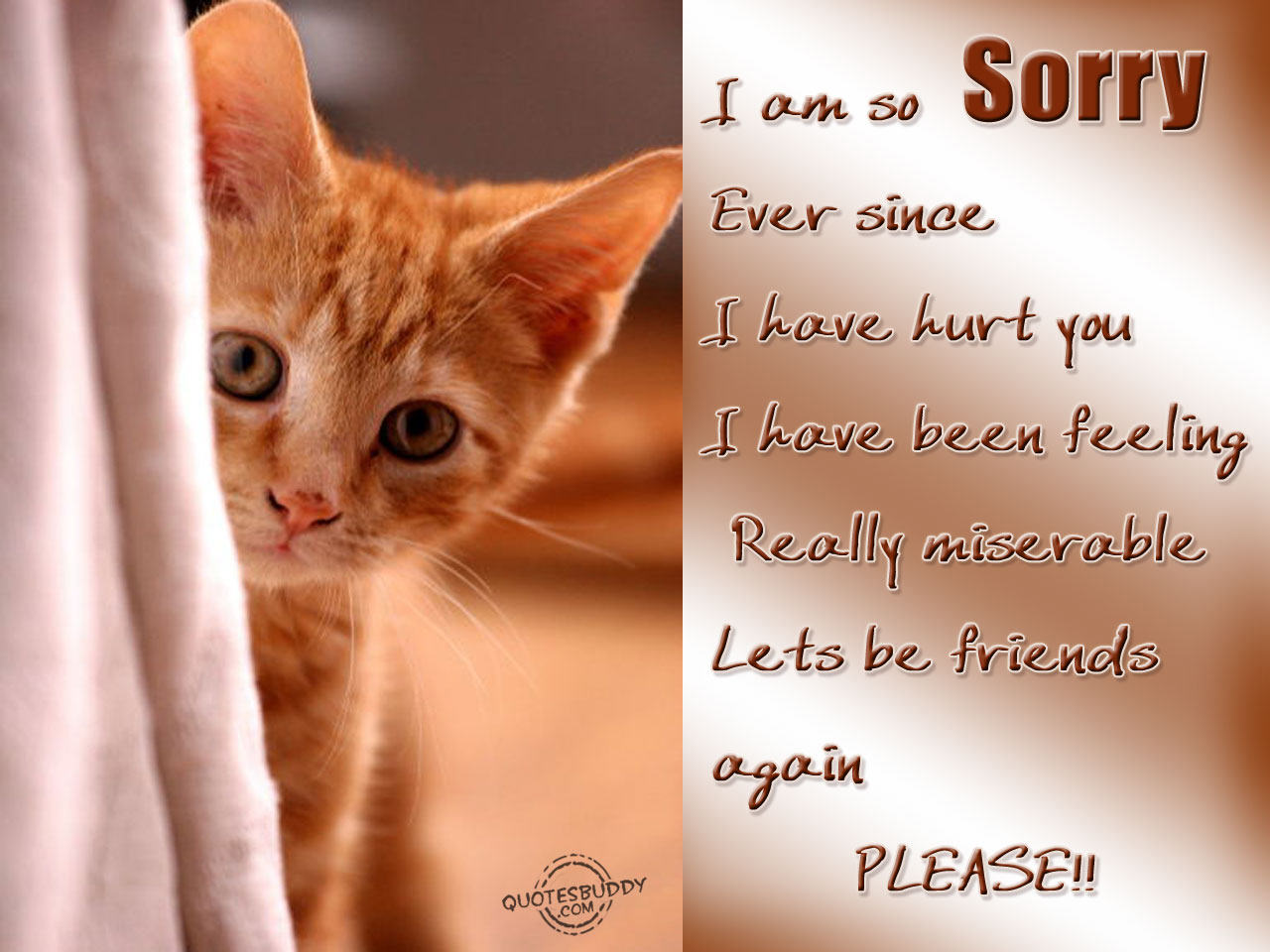 quotes about sorry (554 quotes)