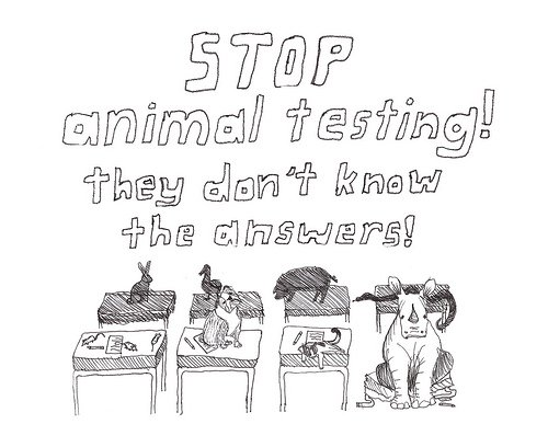 experiment on animal should be stopped Beauty and the beasts: the us should ban testing cosmetics on animals there are more effective, efficient and humane ways to be sure products are safe.