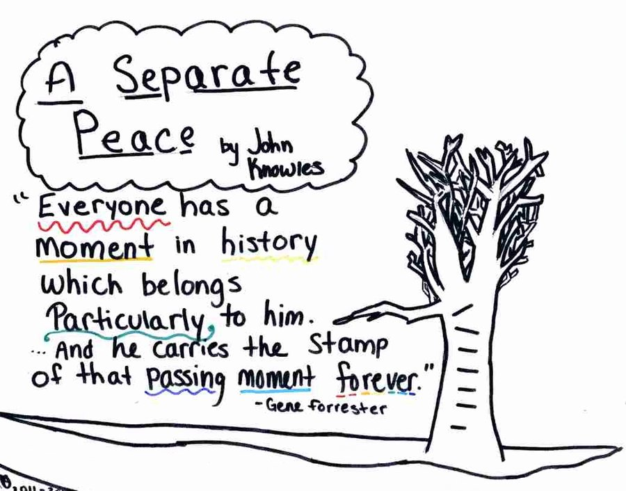 separate peace essay The novel a separate peace is a story about two best friends, gene and phineas (finny), who both attend the devon school in new hampshire in 1942 gene forrester is an intellectual, confined, straight-laced seventeen year old, while finny is an athletic free-spirit who isn't afraid to say what he thinks and is admired by.