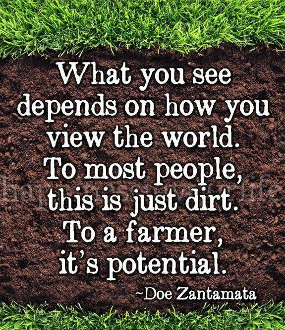 Quotes About Farmers Market 60 Quotes Classy Farm Quotes