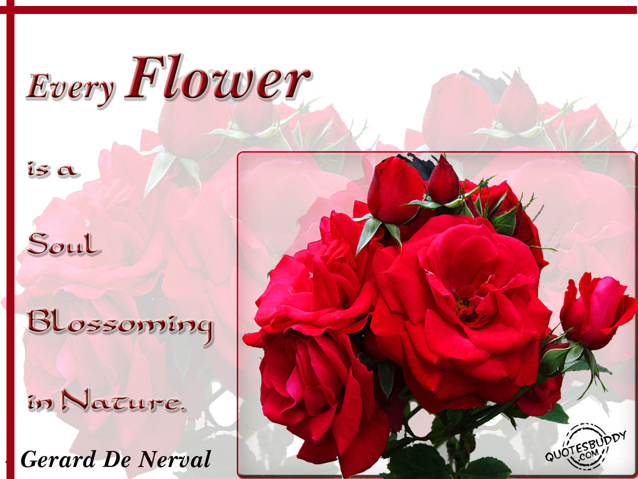 Quotes About Beauty Of Flowers 62 Quotes