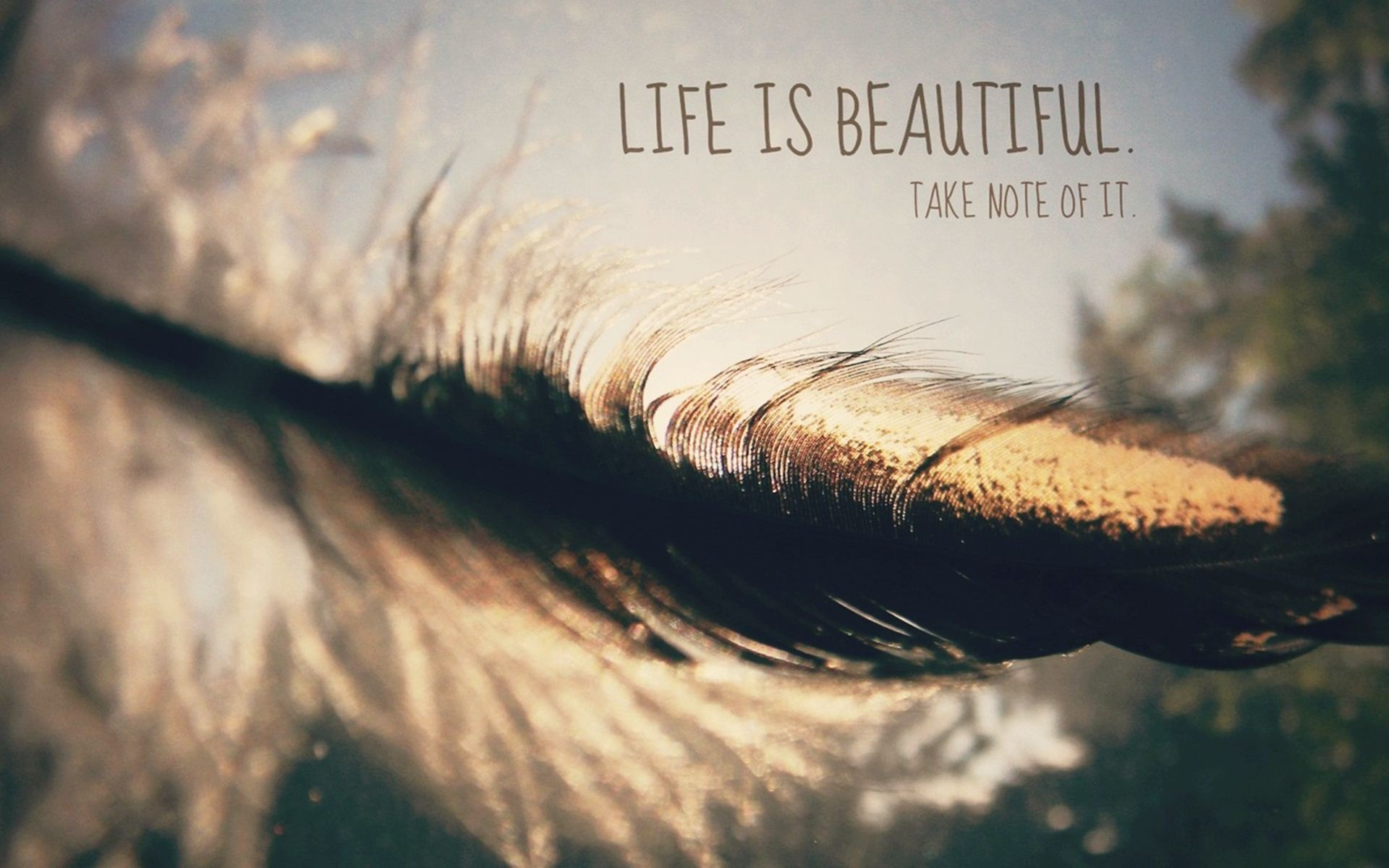 life is beautiful abstract Choose your favorite life is beautiful paintings from millions of available designs all life is beautiful paintings ship within 48 hours and include a 30-day money-back guarantee.