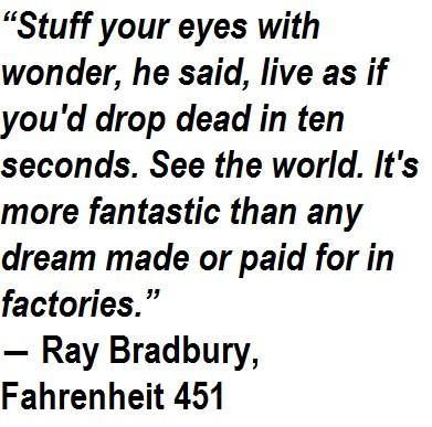 Quotes About Fahrenheit 60 60 Quotes Fascinating Fahrenheit 451 Quotes