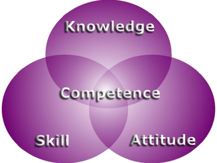 an examination of competency based systems