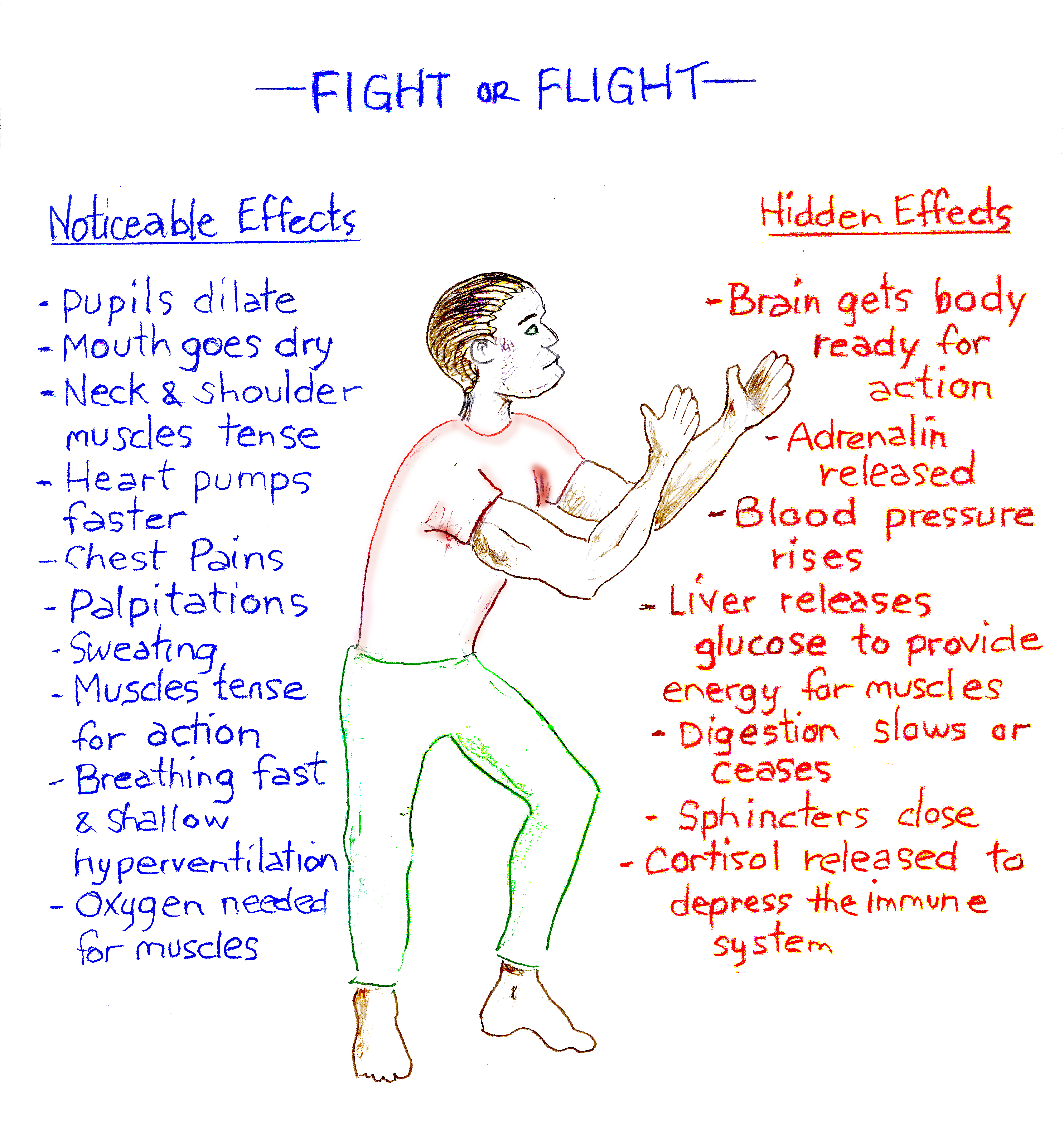 Quotes About Fight Or Flight Response 22 Quotes