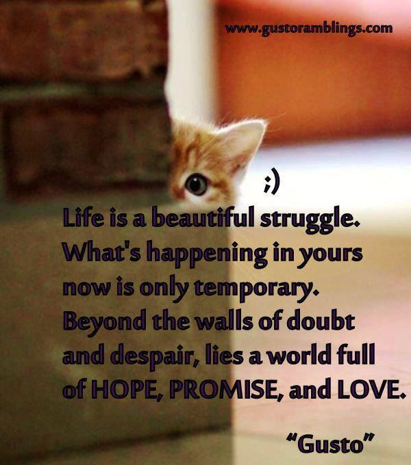 life is full of struggle essay