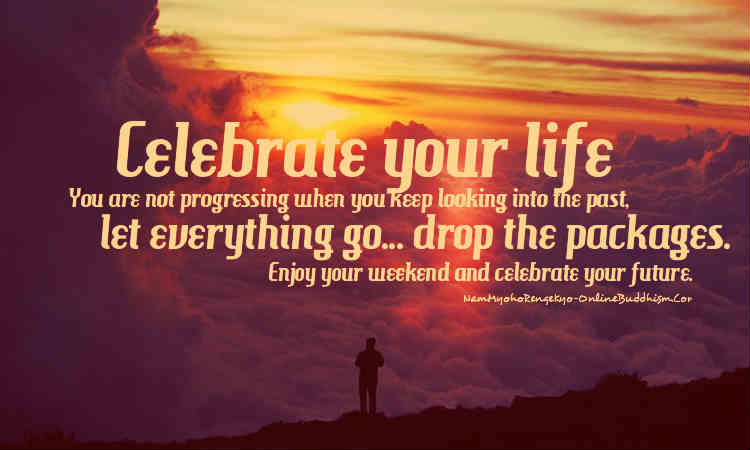 Quotes About Celebration Of Life 60 Quotes Adorable Celebrating Life Quotes