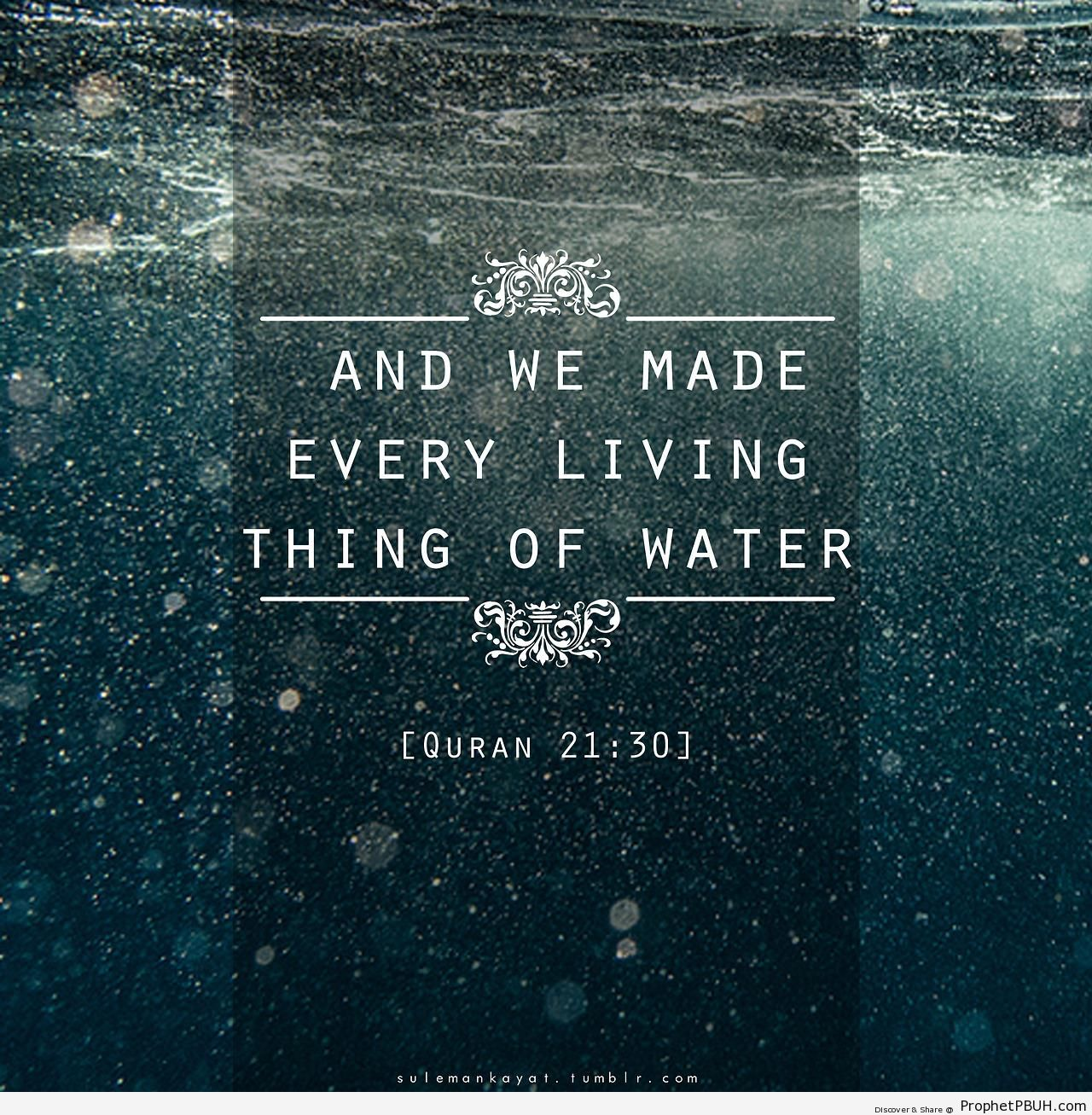 Quotes Quran: Quotes About Reflection In Water (38 Quotes