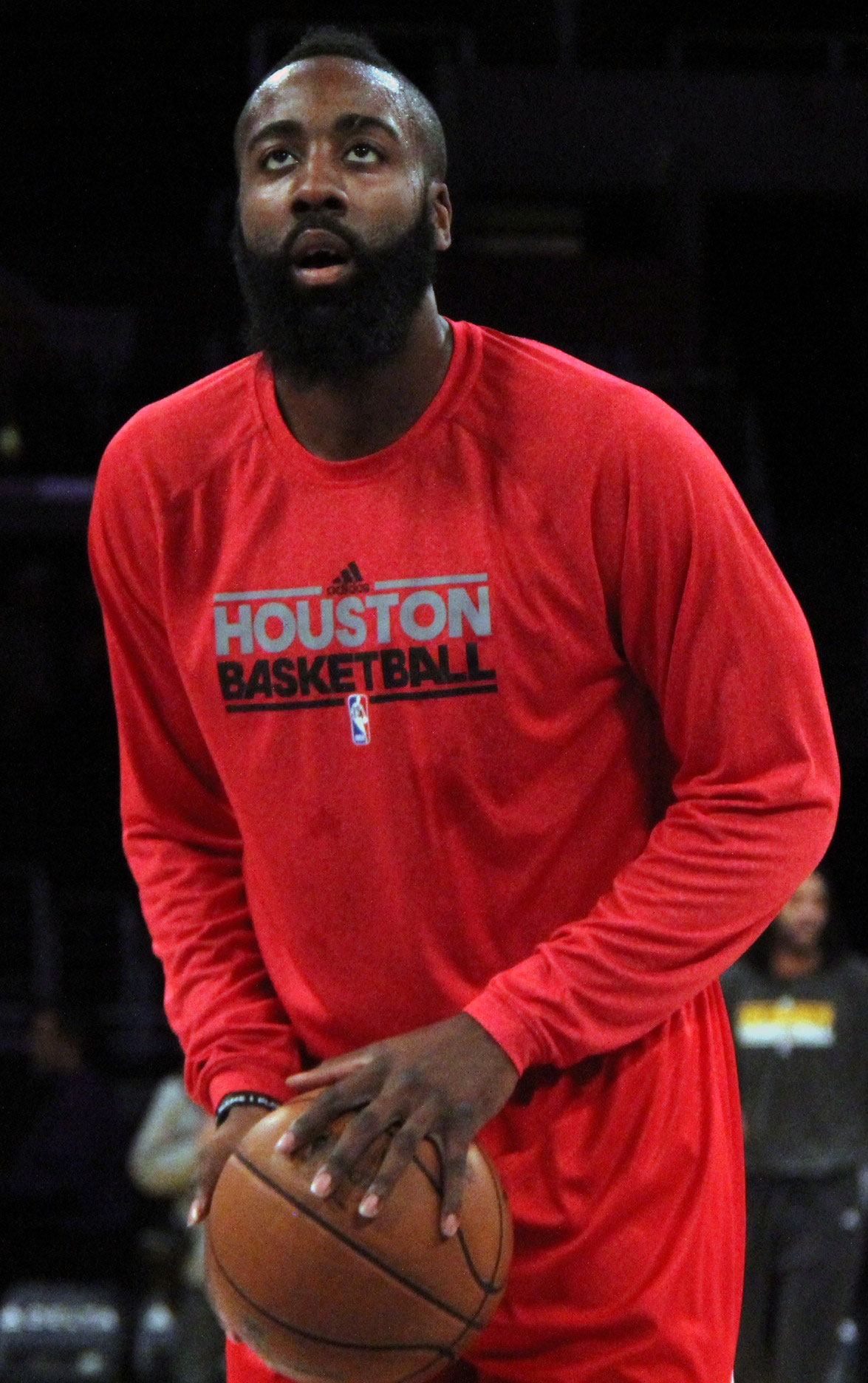 7bbb77907 Quotes about Harden (71 quotes)