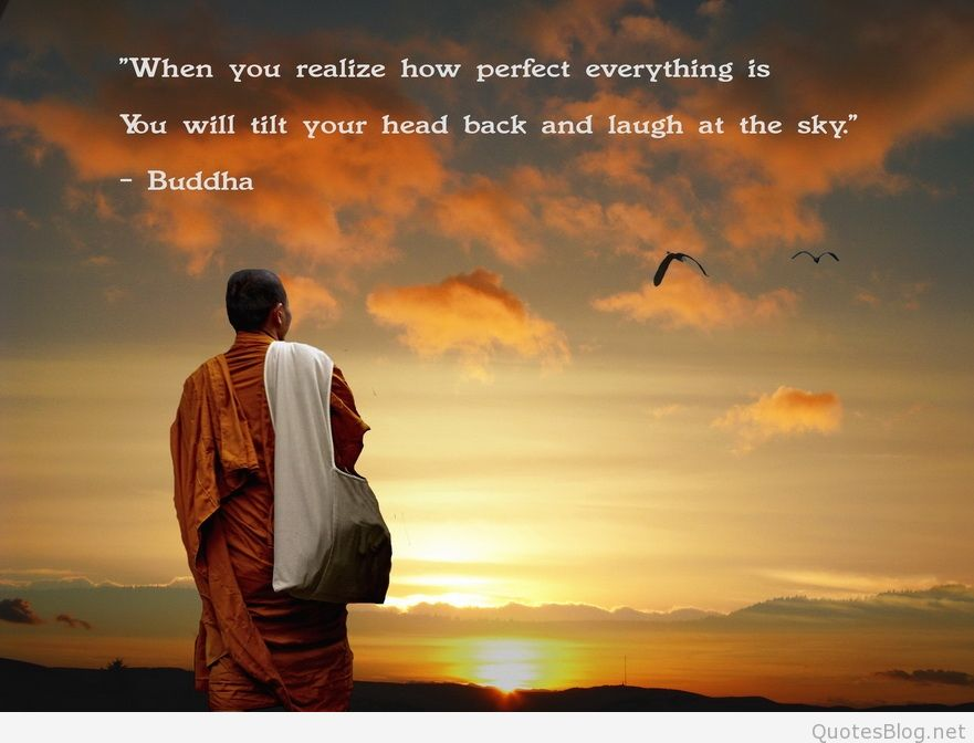 Wisdom Quotes   Quotes About Light And Wisdom 65 Quotes