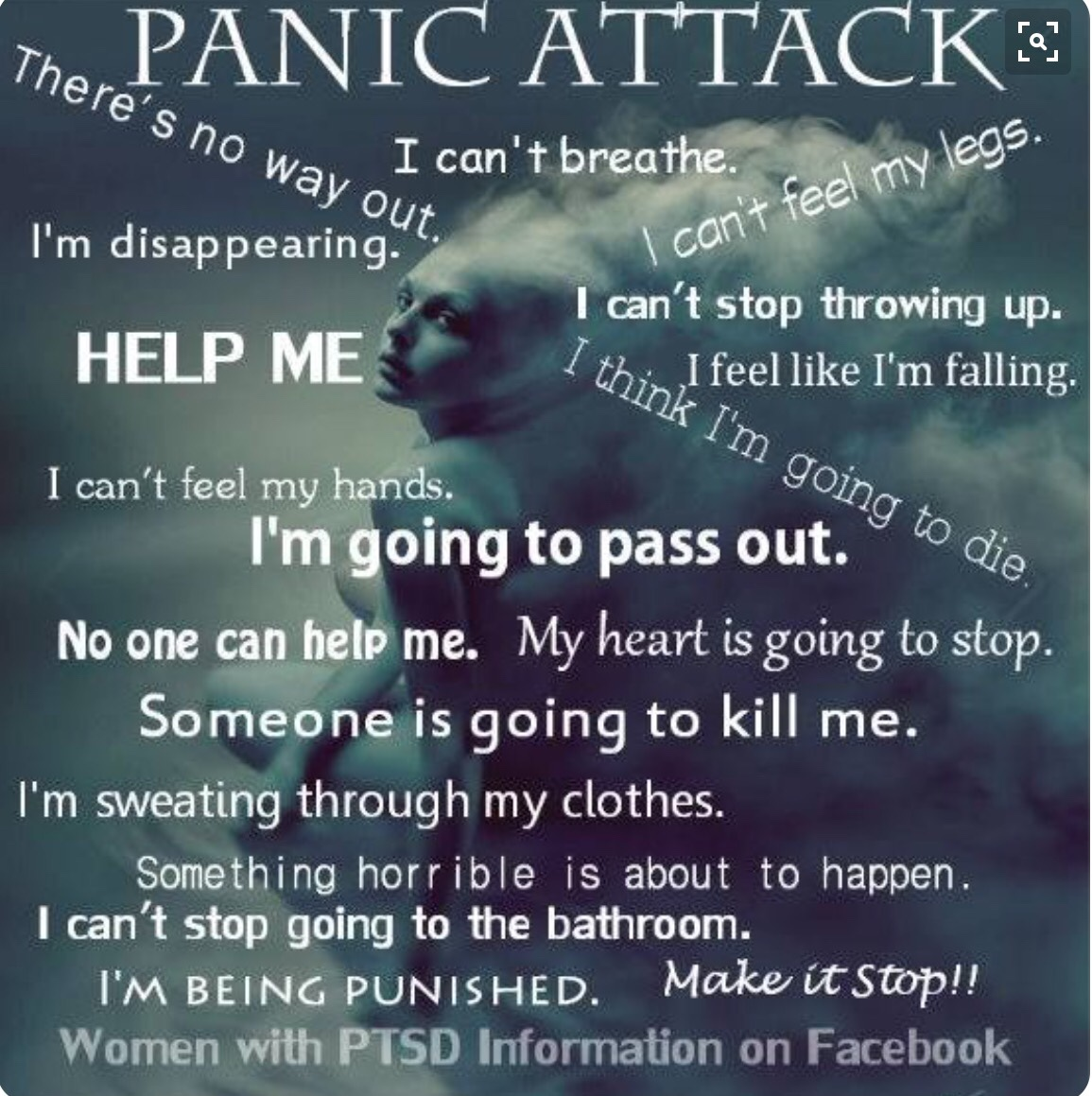 Quotes About Panic Attacks Quotes About Panic Attacks Delectable Best 25 Panic Disorder Ideas