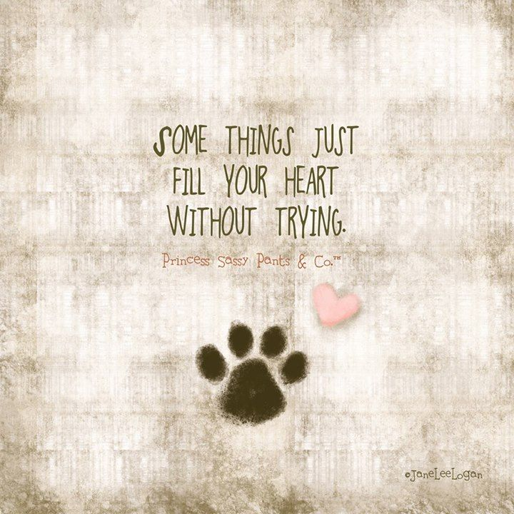 Quotes About I Love My Dog 60 Quotes Simple I Love My Dog Quotes