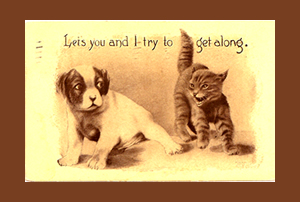 cat and dog quotes