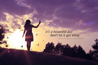 Quotes About Beautiful Song 91 Quotes