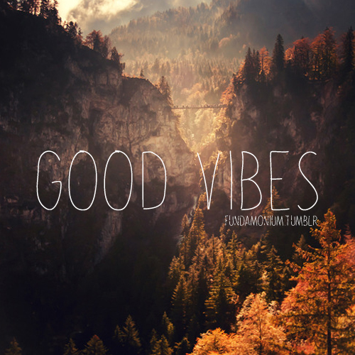 Good Vibes Quotes: Quotes About Good Vibes (53 Quotes